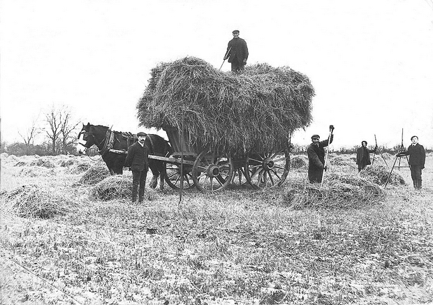 Village Archive Group - Farming 1907
